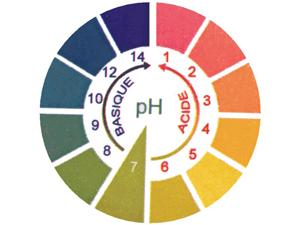 Les légumes brûle graisse rééquilibrent le pHsanguin