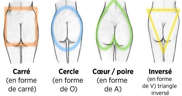 formes des fesses
