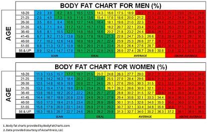pourcentage masse graisseuse idéal